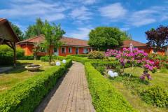 Blühender Innenhof vom Eingang her